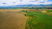 Aerial of cultivated land in the Western Cape, South Africa. Captured with the DJI Inspire on-board camera.