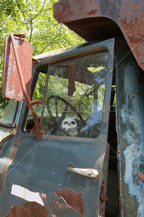 human skull tied to a steering wheel in an abandoned old truck