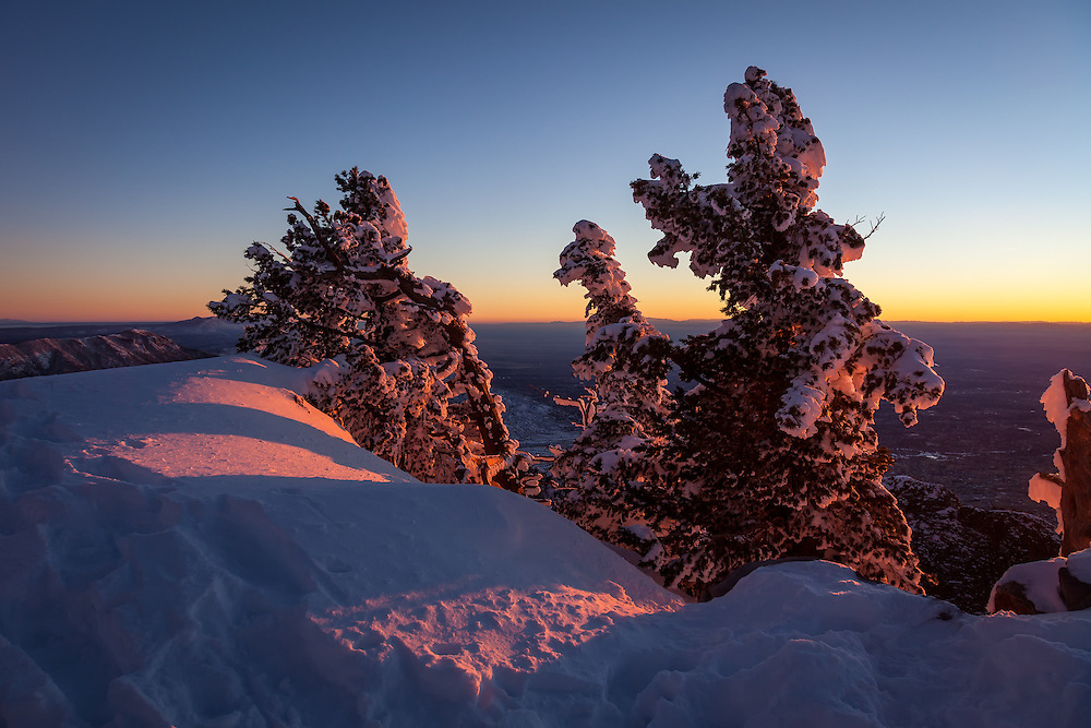 At 10,678 feet, these frozen sentinels atop Sandia Crest soak up the last warmth of the sun before the clear, crisp night descends upon the city of Albuquerque below.