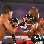Ricardo Rodriguez (L) lands a clean jab to the face of Jonathan Vidal during a Telemundo Boxeo boxing match at the A La Carte Pavilion on Friday,  March 13, 2015 in Tampa, Florida.  Rodriguez won the bout. (AP Photo/Alex Menendez)