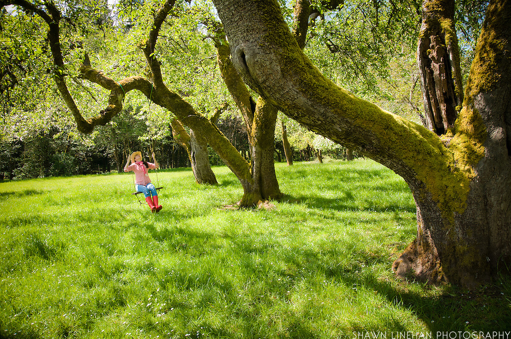 Kerry Newberry swings from one of the heritage apple trees at Leaping Lamb Farm.