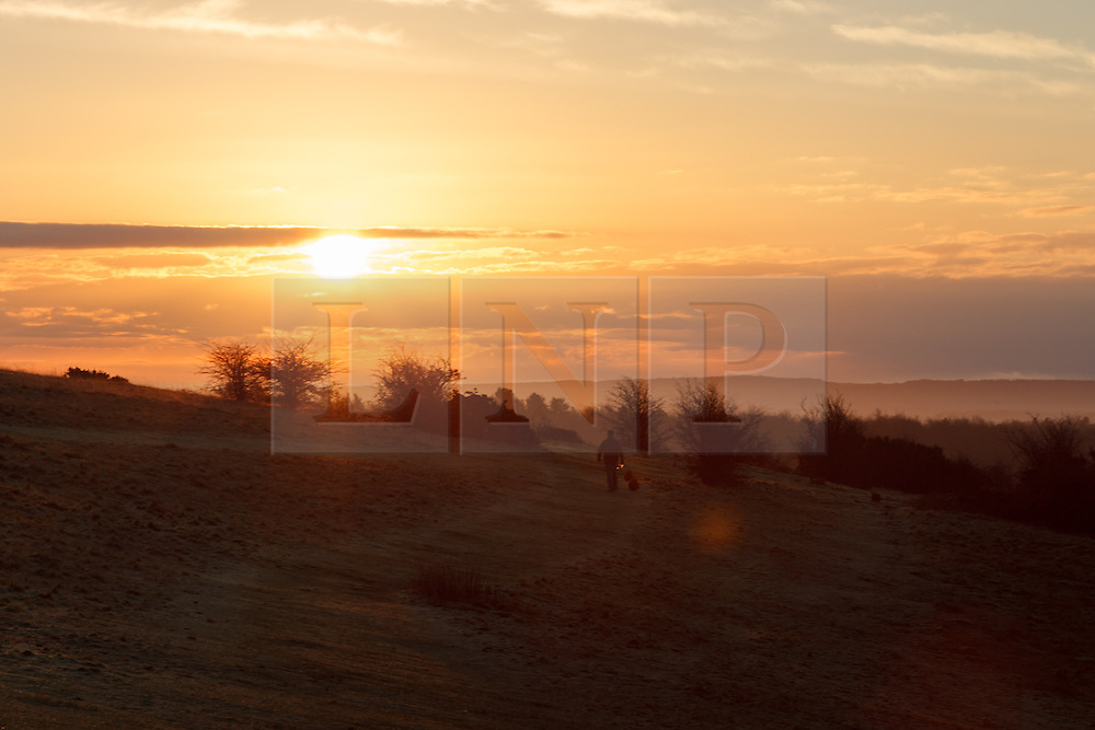 © Licensed to London News Pictures. 21/01/2014. Butser Hill, Petersfield, Hampshire, UK. A man walking his dogs during a misty sunrise over the South Downs in Hampshire this morning, 21st January 2014. Photo credit : Rob Arnold/LNP