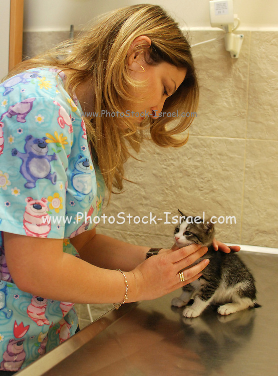 Female vet treats a New born Kitten
