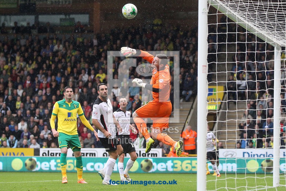 Adam Collin of Rotherham United punches clear during the Sky Bet Championship match at Carrow Road, Norwich<br /> Picture by Paul Chesterton/Focus Images Ltd +44 7904 640267<br /> 04/10/2014