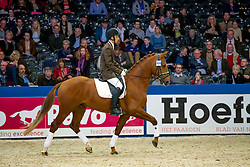 800 - Floris BS<br /> KWPN Stallion Selection - 's Hertogenbosch 2014<br /> © Dirk Caremans