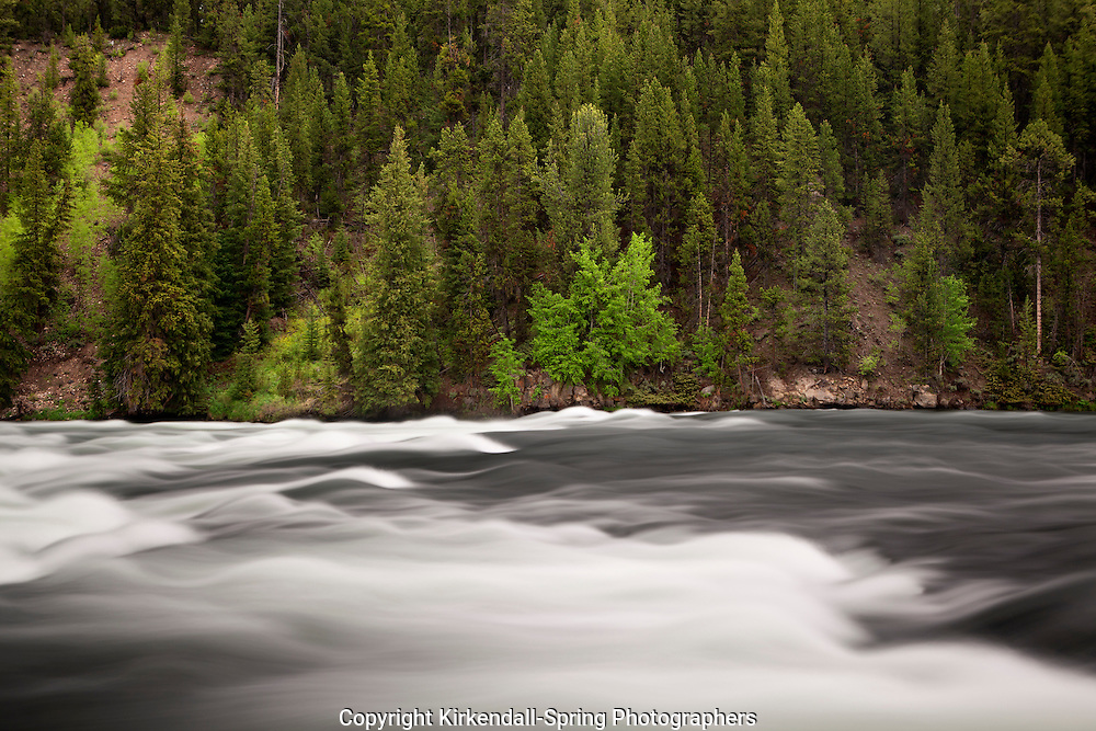 WY00516-00...WYOMING - LeHardys Rapids of the Yellowstone River located in the Hayden Valley area of Yellowstone National Park.