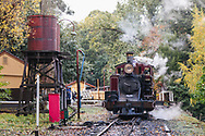 Melbourne Victoria Australia Puffing Billy steam train in Emerald Lake Park rainforests of the Dandenong Ranges