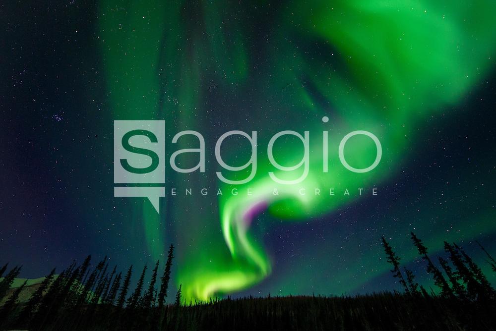 The aurora borealis dances overhead Interior Alaska.