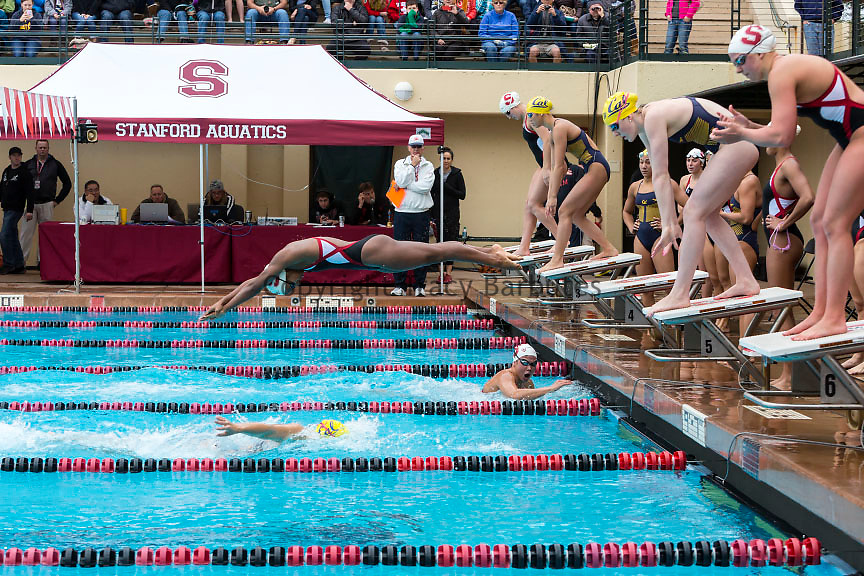 Stanford University women's relay team vs. UC Berkeley at a swim meet hosted by Stanford at the Avery Aquatic Center.
