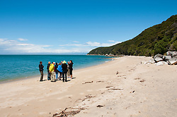 New Zealand, South Island: Landscape near Tonga Quarry along the Abel Tasman National Park coast. Photo copyright Lee Foster. Photo # newzealand125106