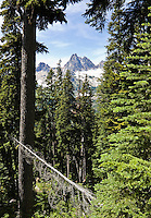 Cutthroat peak in the North Cascades of Washington as seen from the Blue Lake Trail near Washington Pass.