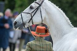 Milne Home Louisa, (GBR), King Eider<br /> First Horse Inspection - Mitsubishi Motors Badminton Horse Trials <br /> Badminton 2015
