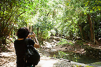 Rear view of young male hiker photographing in forest; Koh Pha Ngan; Thailand