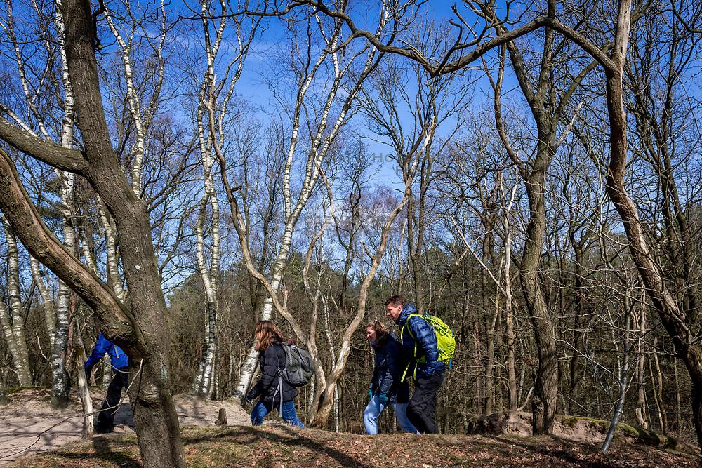 18-03-2018 NED: We hike to change diabetes, Soest<br /> Training voor de Camino 2018 op de Soesterduinen / track hiking lopen Bas