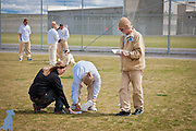 Two handlers work with Ms. E. to set up the Rally-O signs in the exercise yard at Coyote Ridge Corrections Center while four men work with Remington in the background.  Professional pet pictures by Michael Kloth.