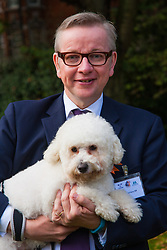 London, October 23rd 2014. Organised by the Dogs Trust and the Kennel Club, politicians  and their pooches gather outside Parliament for the 22nd Westminster Dog of the Year competition, aimed at raising awareness of dog welfare in the UK where the Dogs Trust cares for over 16,000 stray and abandoned dogs annually. PICTURED: Chief Whip Michael Gove and his Bichon Frise Cross Snowy.