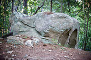 Boulders are scattered through the hiking trails DeHart Botanical Gardens in Louisburg, NC.