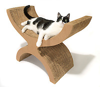 cardboard scratching post with seat