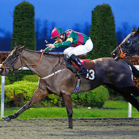 Mr Chocolate Drop and Martin Harley winning the 4.25 race