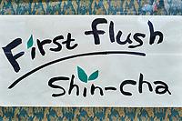 Japon, île de Honshu, région de Shizuoka, boutique de thé// Japan, Honshu, Shizuoka, tea shop