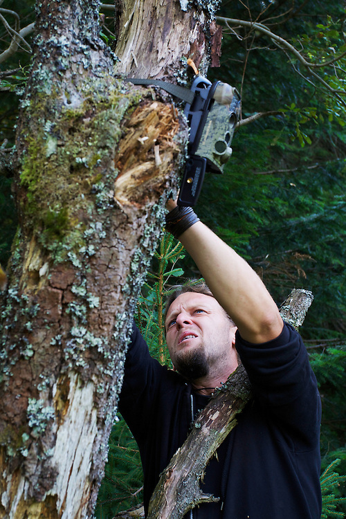 Bartosz Pirga, wildlife biologist at Bieszczady National Park, mounting an infra-red triggered wildlife monitoring camera at a wallow for European bison or Wisent (Bison bonasus) and Red deer (Cervus elaphus). Bukowiec, Poland.