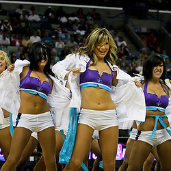 12 April 2009: New Orleans Hornets Honeybees NBA dance team performs during 102-92 victory by the New Orleans Hornets over the Dallas Mavericks on Easter Sunday at the New Orleans Arena in New Orleans, Louisiana.