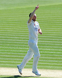 Glamorgan's Graham Wagg celebrates the wicket of Surrey's Steven Davies. - Photo mandatory by-line: Harry Trump/JMP - Mobile: 07966 386802 - 22/04/15 - SPORT - CRICKET - LVCC County Championship - Division 2 - Day 4 - Glamorgan v Surrey - Swalec Stadium, Cardiff, Wales.