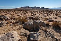 090-P101899<br /> <br /> Saddleback Butte State Park<br /> &copy; 2018, California State Parks.<br /> Photo by Brian Baer