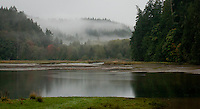 Fog rises from the forest in the Big Beef Creek canyon near its estuary at the Hood Canal of Puget Sound as indicative of a change of seasons from summer to autumn, Washington state, USA