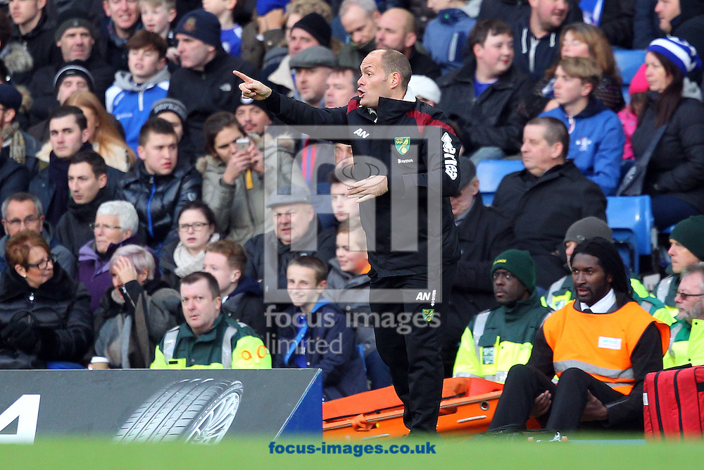 Norwich Manager Alex Neil during the Barclays Premier League match at Stamford Bridge, London<br /> Picture by Paul Chesterton/Focus Images Ltd +44 7904 640267<br /> 21/11/2015