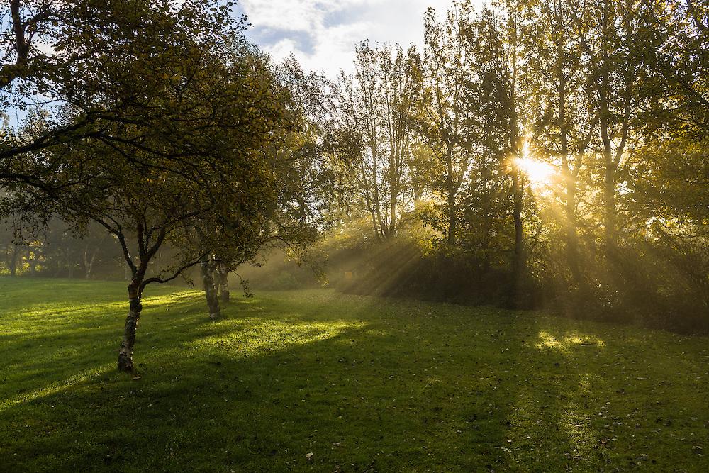 Morning sun breaking through the fog at Klambratun