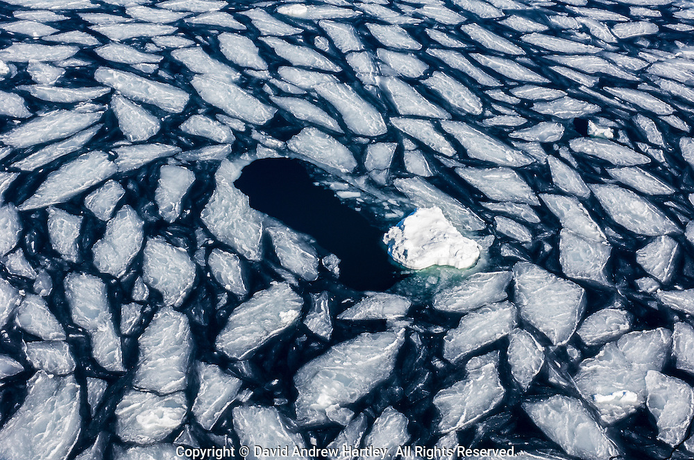 Broken up angular pancake iceberg floe in the Weddell Sea, Weddell Sea, Antarctica