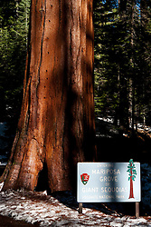 National Park Sign to the entrance of Mariposa Grove of Giant Sequoias, Yosemite National Park, California, United States of America