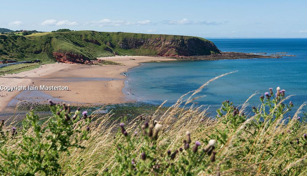 View of Pease Bay beach on Berwickshire coast, Scotland, UK.