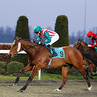 Royal Envoy and M Stainton winning the 5.40 race
