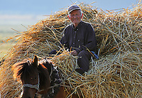Home with hay-load. Lake Prespa National Park, Albania June 2009