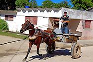 Man driving a horse in Campechuela, Granma, Cuba.