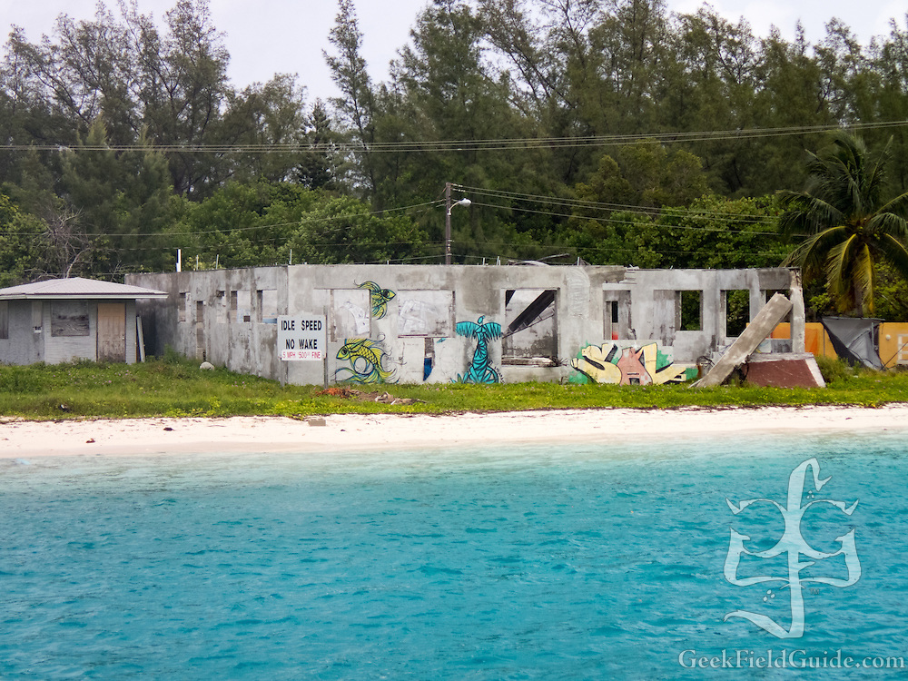 Graffiti-covered ruined building at the gap between north and south Bimini.