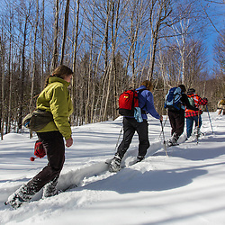 Hikers on the Libby Road trail in winter. Green Mountain. Effingham, New Hampshire.
