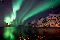 "The Aurora Borealis (Northern Lights) at ""the fjord of light"" in Ersfjordbotn, Tromso, Norway."