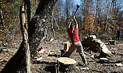 Student Nick Barker chops wood that will be used over the winter to heat the Mountain School