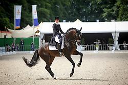 Barbancon Mestre Morgan, ESP, Sir Donnerhall II<br /> Grand Prix Special CDI5*- CHIO Rotterdam 2017<br /> © Hippo Foto - Sharon Vandeput<br /> 23/06/17