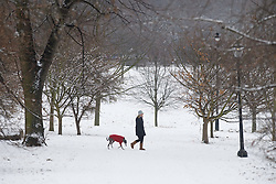 © under license to London News Pictures.  19/12/2010. A dog walker wades through a blanket of snow in Hyde Park, London today (19/12/2010). The UK was covered in a blanket of snow over the weekend causing travel chaos. Photo credit should read: London News Pictures.