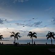 Cairns Esplanade is Cairns CBD.