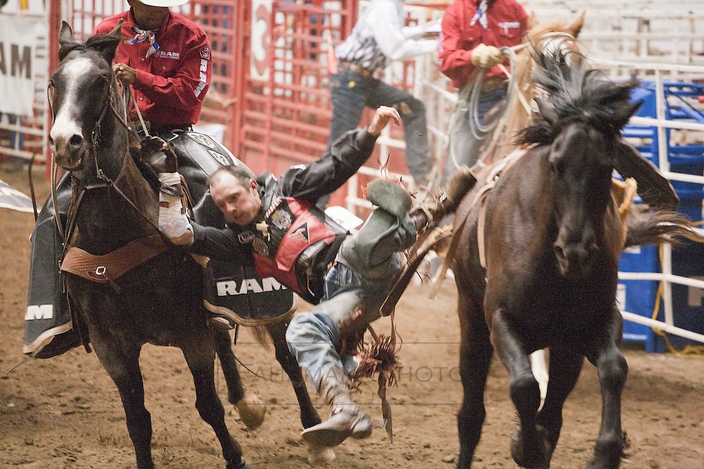 Images from the 2012 Minnesota Horse Expo Rodeo held in Warner Coliseum on the Minnesota State Fair Grounds on Sunday April 29th. The rider dismounts with the aid of other horsemen after successfully completing his time on the wild horse.