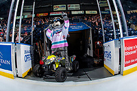 KELOWNA, CANADA - FEBRUARY 7: Rocky Raccoon, the mascot of the Kelowna Rockets prepares to enter the ice against the Vancouver Giants on February 7, 2018 at Prospera Place in Kelowna, British Columbia, Canada.  (Photo by Marissa Baecker/Shoot the Breeze)  *** Local Caption ***