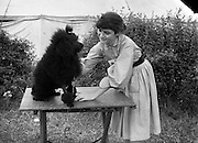 """04/08/1952 <br /> 08/04/1952<br /> 04 August 1952  <br /> Dog Show, 18th Annual Green Star Championship at Monkstown, Co. Dublin. Miss Roisin Jammet, Kill Abbey, Kill O' the Grange, Blackrock, Dublin, with her miniature poodle """"Pudgeen""""."""