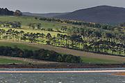 View from Little Ferry Pier, the site of an old ferry across Loch Fleet, looking across towards Skelbo.