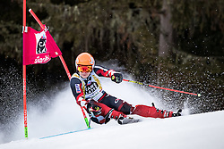 19.12.2016, Grand Risa, La Villa, ITA, FIS Ski Weltcup, Alta Badia, Riesenslalom, Herren, 1. Lauf, im Bild Filip Zubcic (CRO) // Filip Zubcic of Croatia in action during 1st run of men's Giant Slalom of FIS ski alpine world cup at the Grand Risa race Course in La Villa, Italy on 2016/12/19. EXPA Pictures © 2016, PhotoCredit: EXPA/ Johann Groder