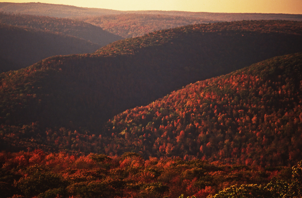 PA landscapes, Endless Mountains, Autumn, NE PA, near World's End State Park, Spring, Pennsylvania